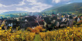 Experience the Alsace of your dreams