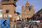 Romanesque Churches, Vineyards and the Upper Rhine Valley